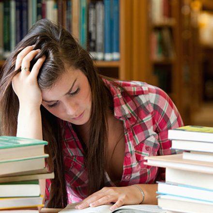 EducationWP